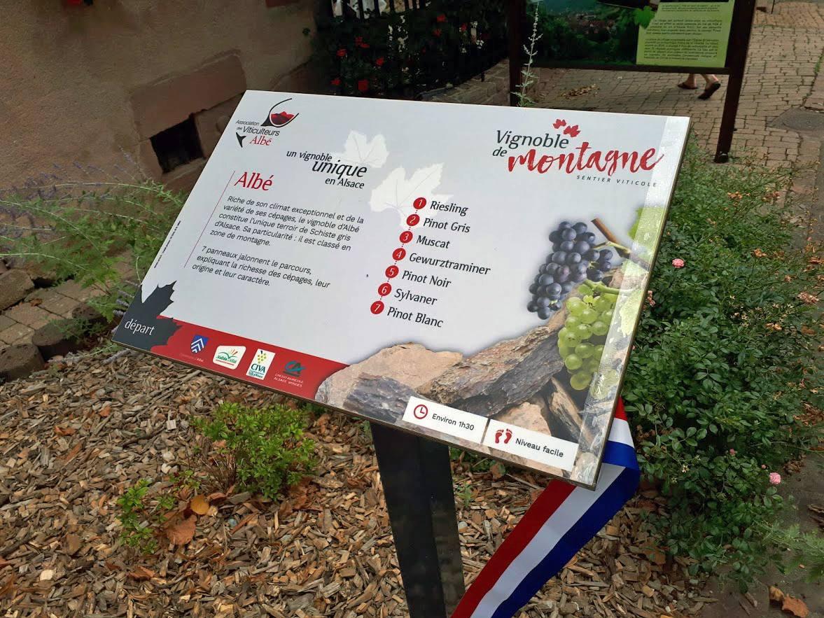 Identité visuelle et panneaux explicatifs pour un sentier viticole